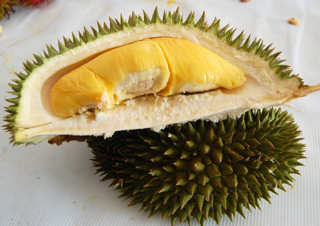 My favorite tropical fruit durian